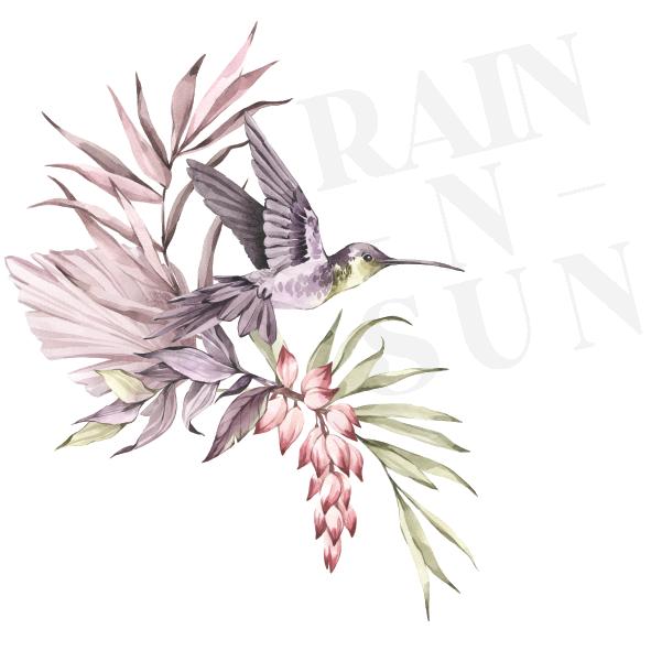 Rain N Sun